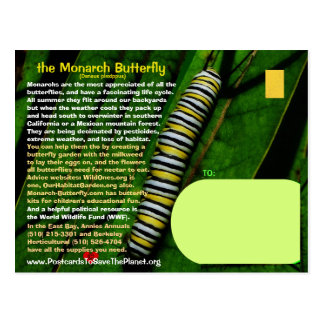 The Monarch Butterfly is endangered - Postcard