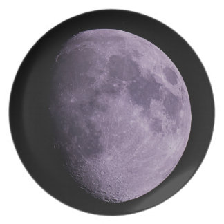 The Moon - Plate