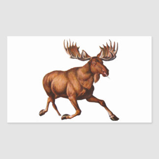 THE MOOSE IS LOOSE RECTANGULAR STICKER