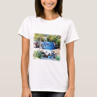 The Moravian Falls NC T-Shirt