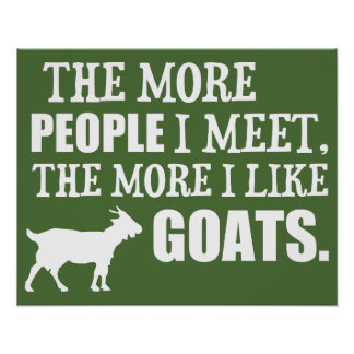 The More I Like Goats Poster