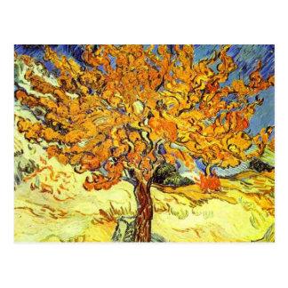 The Mulberry Tree, Vincent van Gogh. Vintage art Postcard