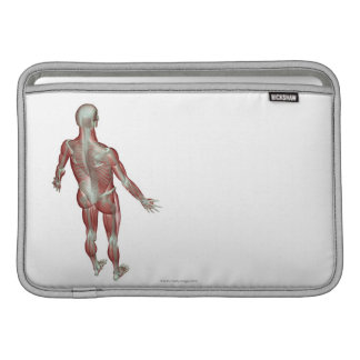 The Musculoskeletal System 12 Sleeve For MacBook Air