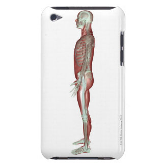 The Musculoskeletal System 6 iPod Case-Mate Case