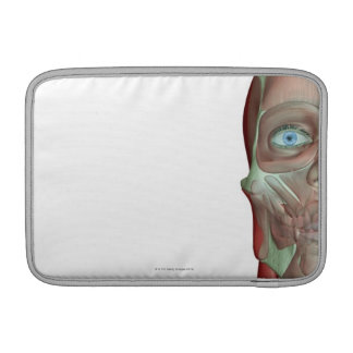 The Musculoskeletal System 7 Sleeve For MacBook Air