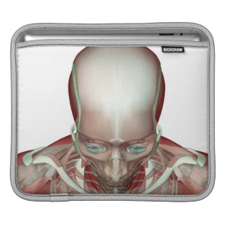 The Musculoskeletan of the Head and Neck 2 iPad Sleeve
