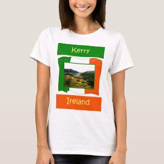 The MUSEUM Artist Series jGibney Ireland FlagKerry T-Shirt