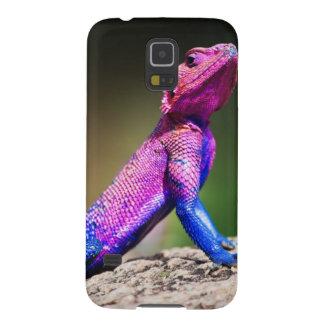 The Mwanza Flat-headed Agama on rock Galaxy S5 Cases