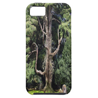 The Mystery Tree Iphone 5 iPhone 5 Case