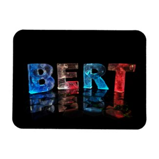 The Name Bert in 3D Lights Rectangle Magnets