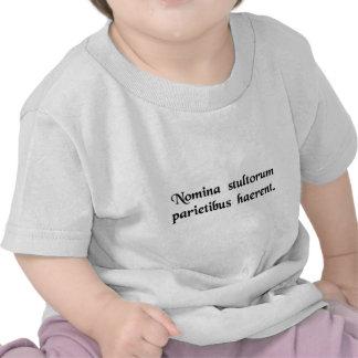 The names of foolish persons adhere to walls tee shirt