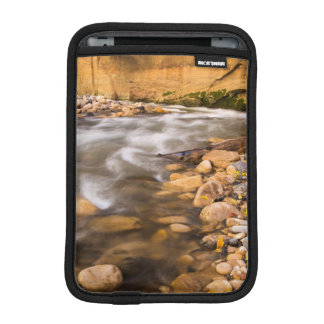 The Narrows Of The Virgin River In Autumn 4 iPad Mini Sleeve