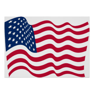 The national flag of the United States of America Poster