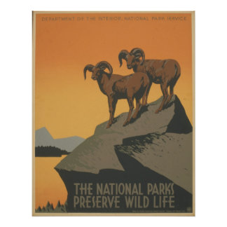 The National Parks Print