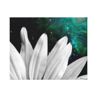 The Naturalists - Cosmic Petals Gallery Wrap Canvas