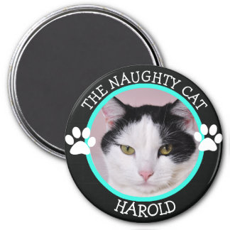 THE NAUGHTY CAT: Humourous  Pawprints Photo Button 7.5 Cm Round Magnet
