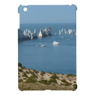 The Needles Case For The iPad Mini