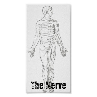 The Nerve poster