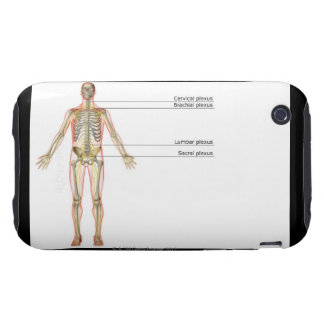 The Nervous System 2 iPhone 3 Tough Cases
