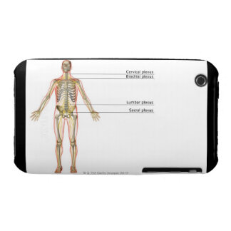The Nervous System 2 iPhone 3 Cover