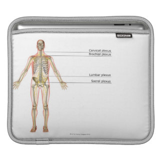 The Nervous System 2 iPad Sleeve
