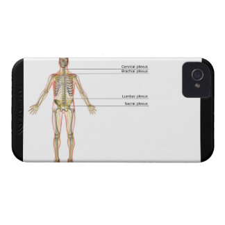The Nervous System 2 iPhone 4 Case-Mate Cases