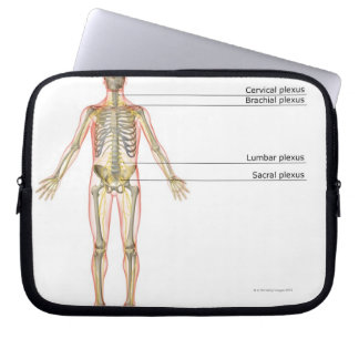 The Nervous System 2 Laptop Computer Sleeve
