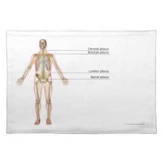 The Nervous System 2 Place Mats