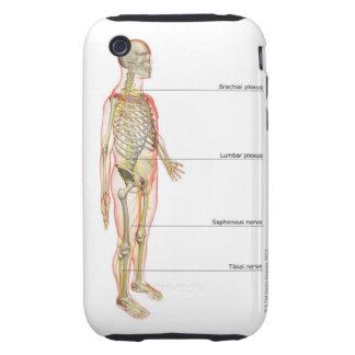 The Nervous System 3 iPhone 3 Tough Case