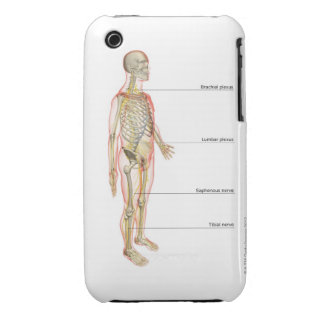 The Nervous System 3 iPhone 3 Case-Mate Cases