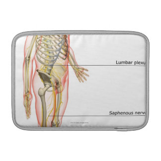 The Nervous System 3 MacBook Air Sleeve