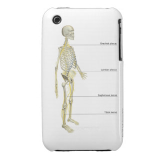 The Nervous System iPhone 3 Cover