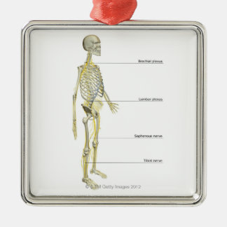 The Nervous System Christmas Ornament