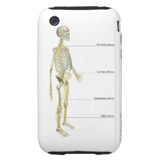 The Nervous System iPhone 3 Tough Covers