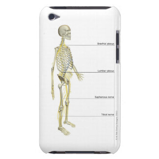 The Nervous System iPod Touch Cases
