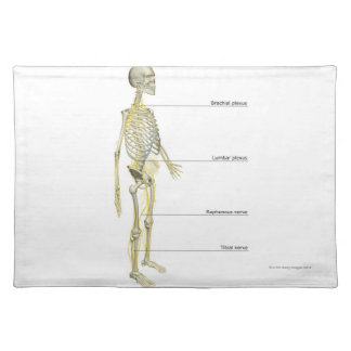 The Nervous System Placemat