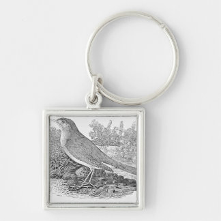 The Nightingale Silver-Colored Square Key Ring