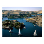 The Nile River Post Cards