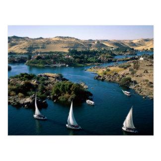 The Nile River Postcard