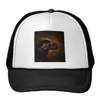 The Noble Lab Trucker Hat