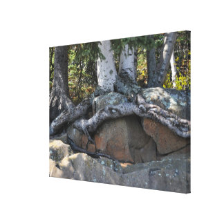 The North Shore Wrapped Canvas Print 1