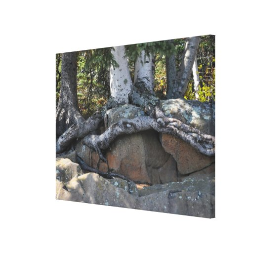 The North Shore Wrapped Canvas Print #1