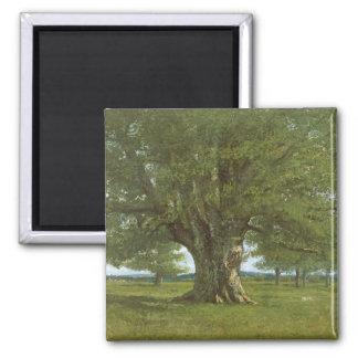 The Oak of Flagey, called Vercingetorix Magnet