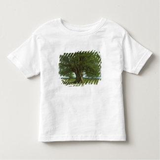 The Oak of Flagey, called Vercingetorix Toddler T-Shirt