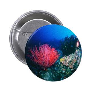 The Ocean Pinback Button
