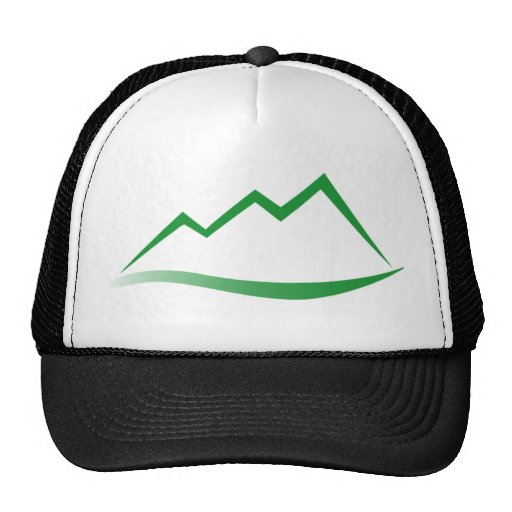 The official mesh hat