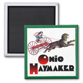 The Ohio Haymaker Square Magnet