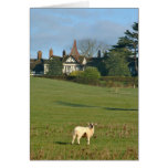 The Old Manor House, Wingrave Greeting Card