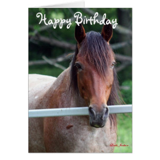The Old Mare Birthday Card