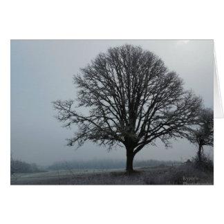 The old Oak tree.. Card